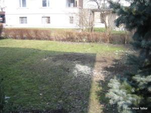 Druzinski-vrtovi-Atrijski-vrt_3