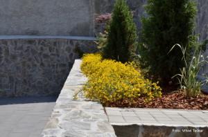 Druzinski-vrtovi-Kamniti-atrijski-vrt_6