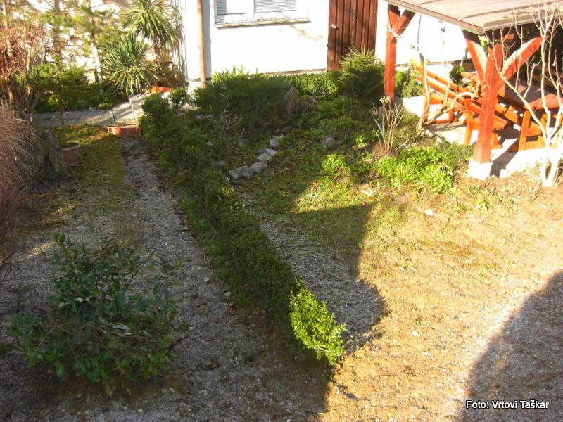 Druzinski-vrtovi-Prava-lepota-je-v-majhnih-vrtovih_1