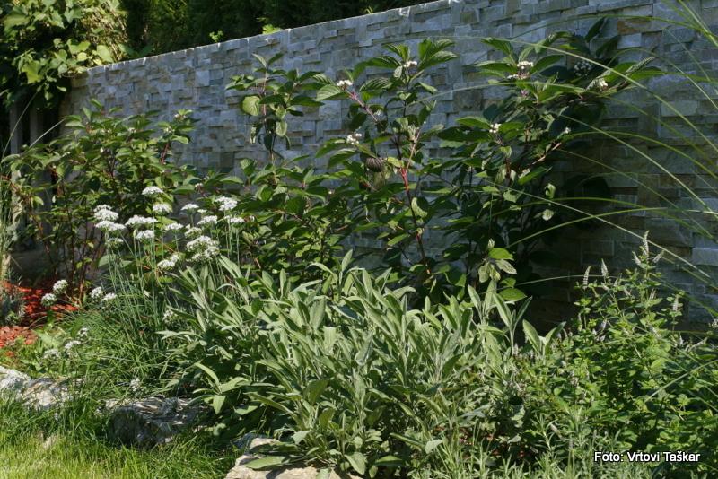 Druzinski-vrtovi-Prava-lepota-je-v-majhnih-vrtovih_13