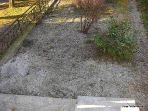 Druzinski-vrtovi-Prava-lepota-je-v-majhnih-vrtovih_2