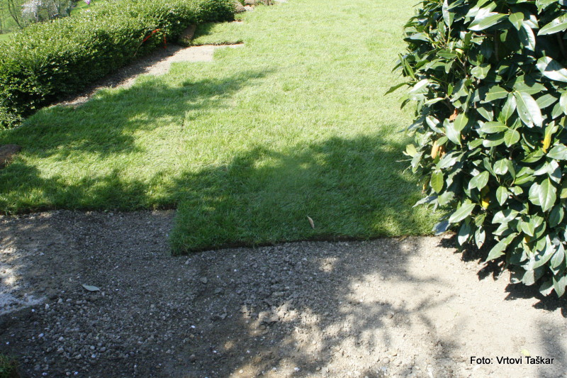 Polaganje-travnih-zvitkov-2_4