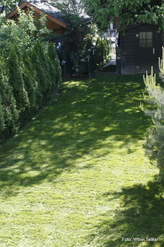 Polaganje-travnih-zvitkov-3_5