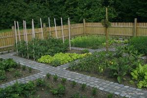 Zelenjavni-vrt-na-podezelju_7