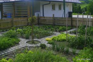 Zelenjavni-vrt-na-podezelju_9