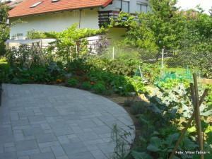 Zelenjavni-vrt-v-mestu_3