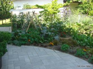 Zelenjavni-vrt-v-mestu_8